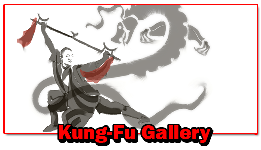 kung-fu-gallery