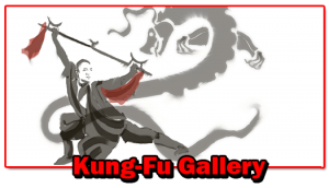 Senior Kungfu Gallery