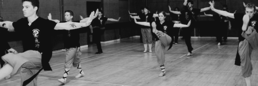 Kung Fu Courses