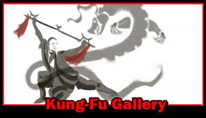 Senior Kungfu Gallery