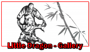 Little Dragons Gallery